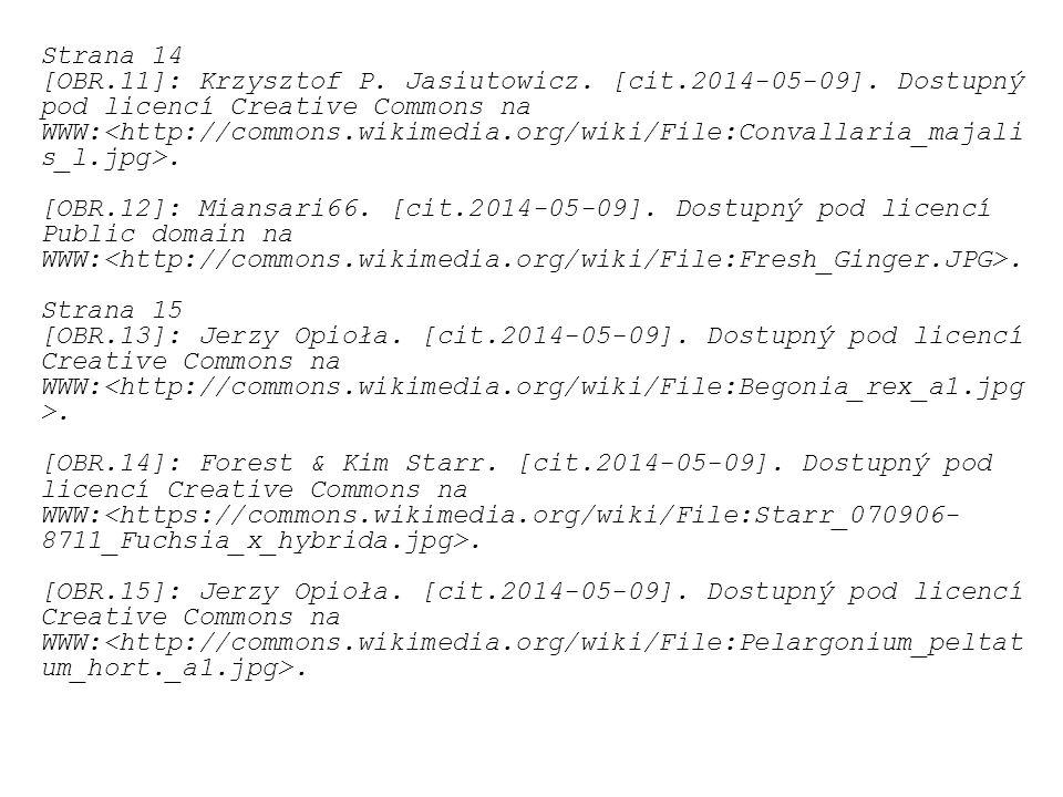 Strana 14 [OBR.11]: Krzysztof P. Jasiutowicz. [cit.2014-05-09]. Dostupný pod licencí Creative Commons na.